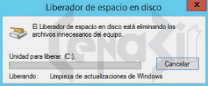 winsxs (16)