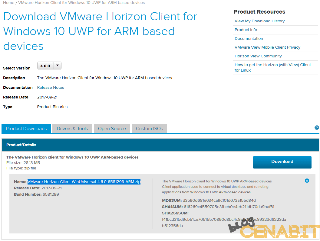 Configurar Windows 10 IoT como ThinClient para Horizon View - Blog